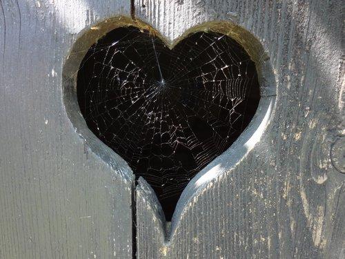 Herz in Holz mit Spinnennetz